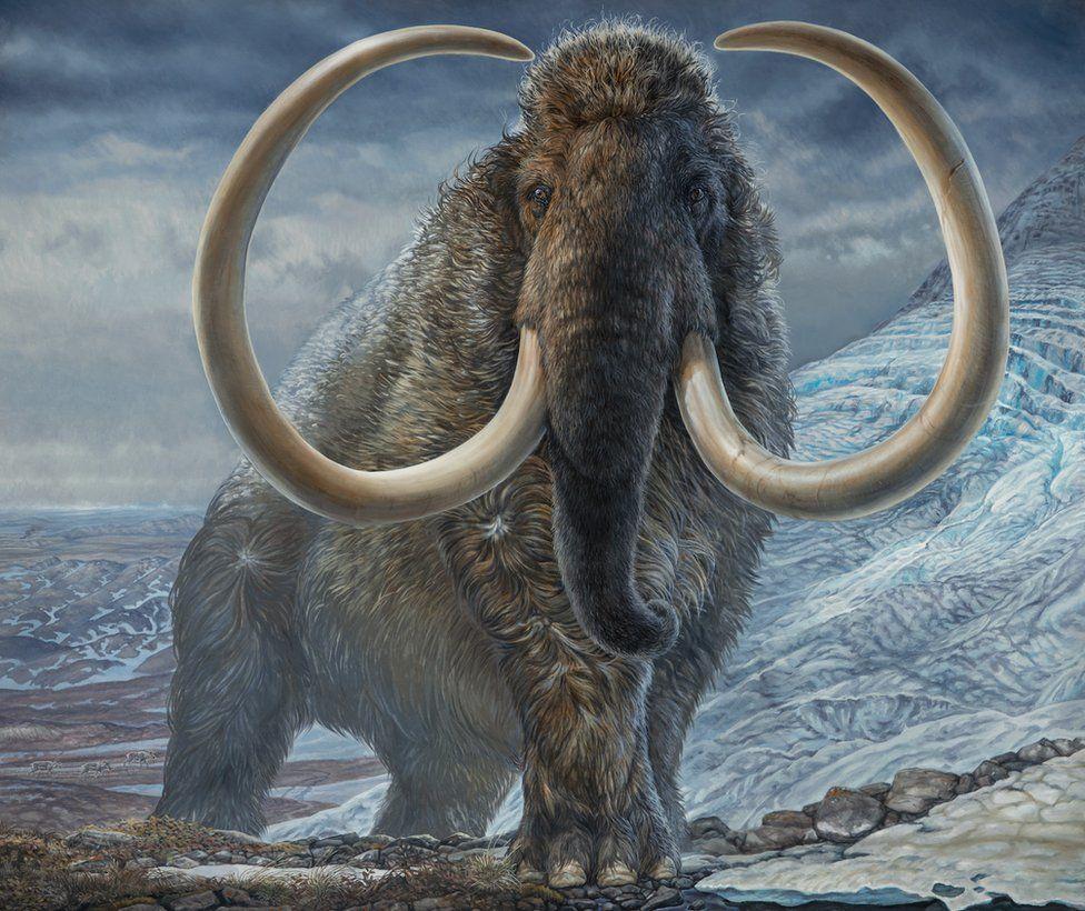 _119920499_mammoth_painting_havens.jpg