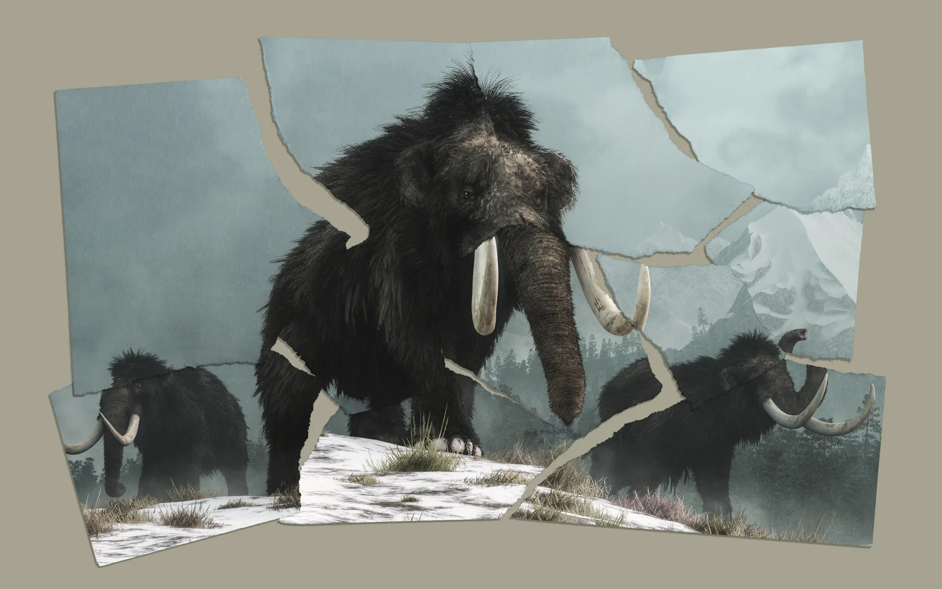 wooly-mammoth-colossal-1.jpg